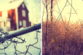 Winter-Diptych