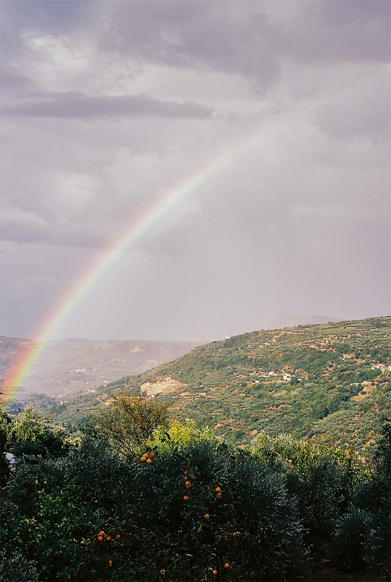 Rainbow over orange tree, Crete